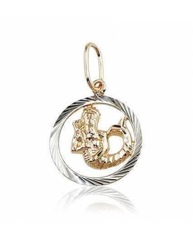 Auksinis pakabukas – zodiako ženklas(AU-R+PRH-W) (Vandenis), Raudonas auksas585, rodis (padengti0